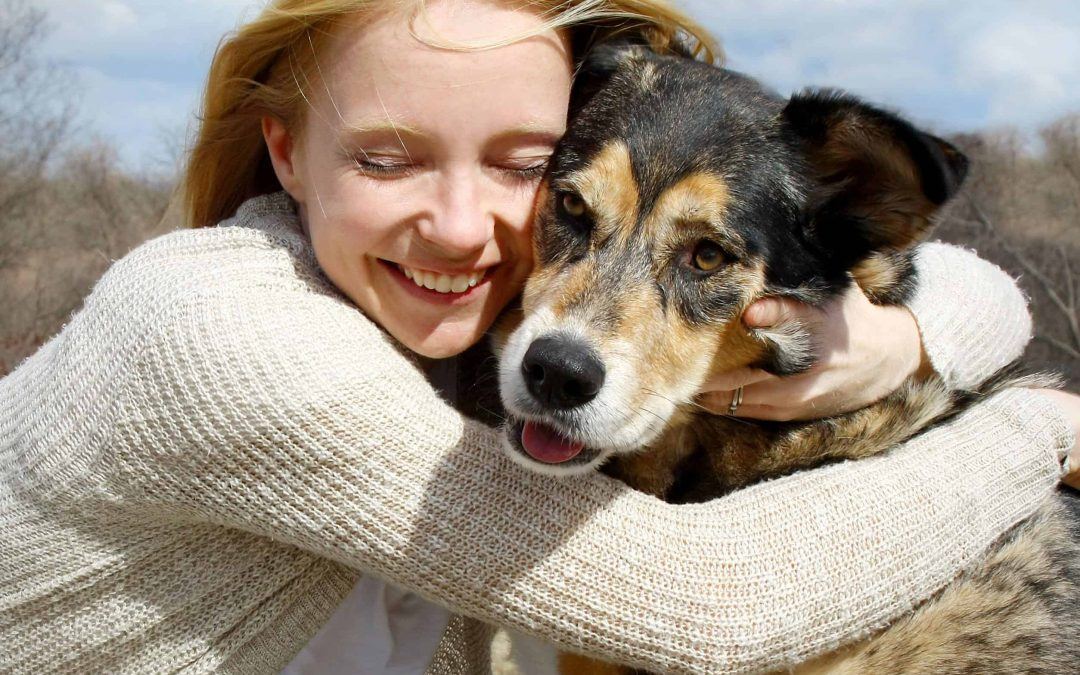 How To Care For Your Senior Dog