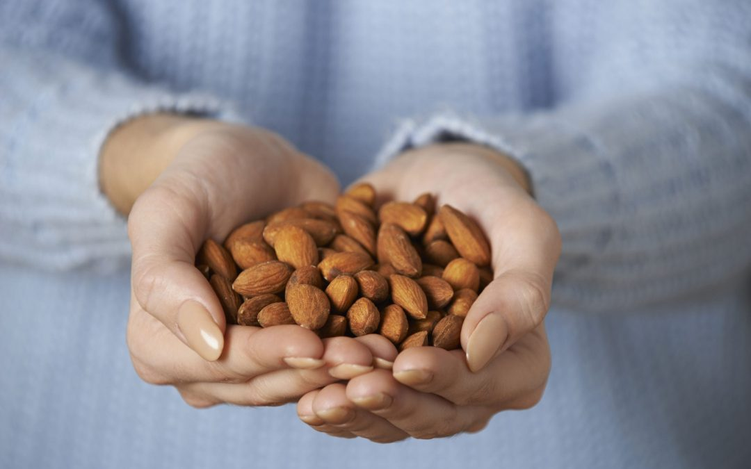 Can Dogs Eat Almonds? What About Other Types of Nuts?