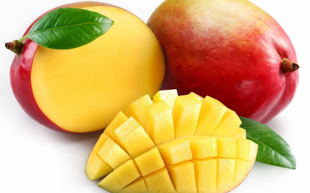 Human Food For Dogs: Can Dogs Eat Mangoes? (and the surprising answer)