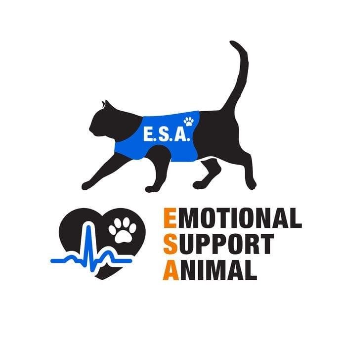 Emotional Support Dog | Dr Marty