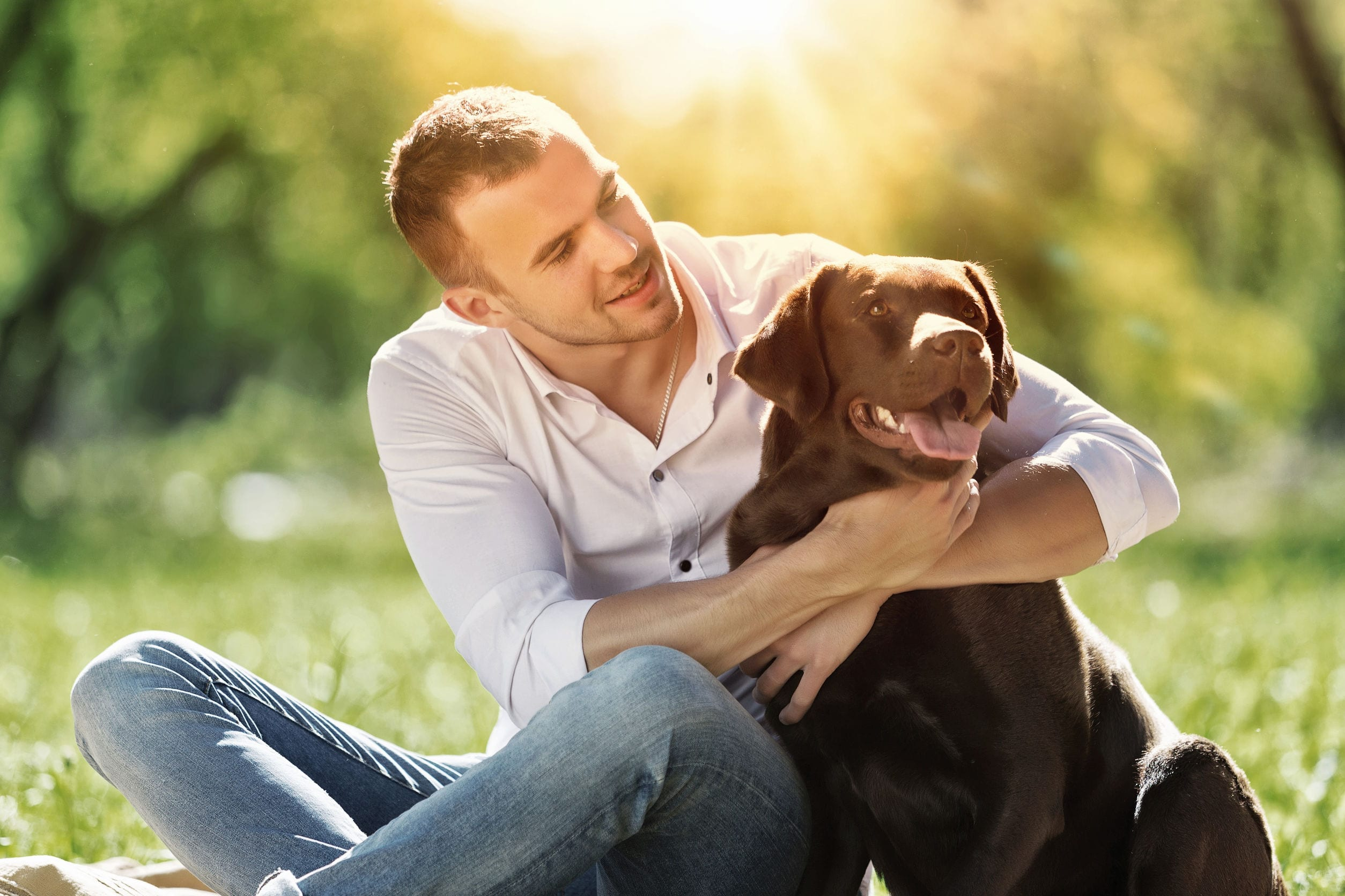 Everyone Loves a Lab Mix, But Why?