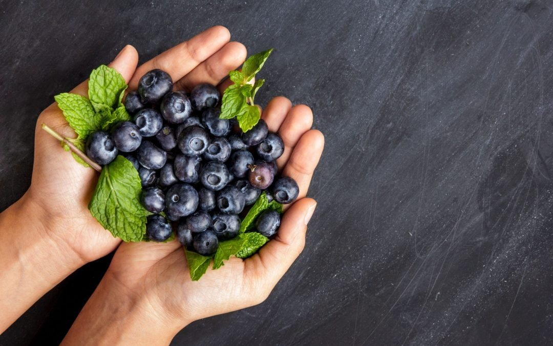 Human Food For Dogs: Can Dogs Eat Blueberries?
