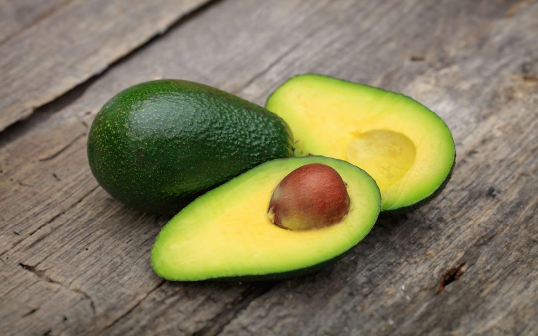Human Food For Dogs: Can Dogs Eat Avocado?
