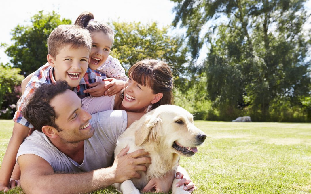 Facts About Dog Health Every Dog Parent Should Know