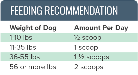 Canine Renew Feeding Recommendation