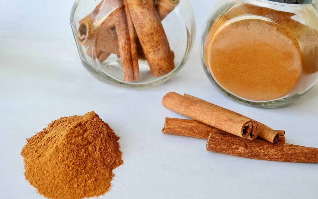 Can my dog eat cinnamon? Here's the truth